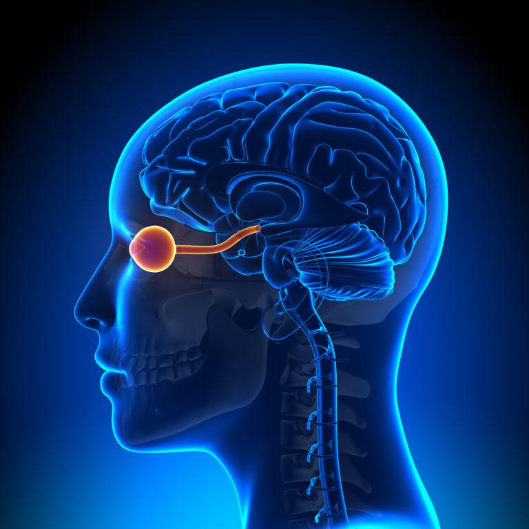 Neuromielita optica